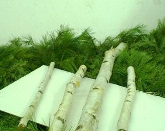 White Birch Logs - Pick your Sizes