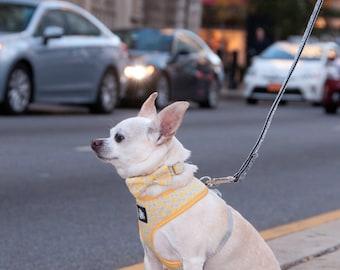 Yellow Dog Harness - Yellow + Gray Dot Dog Harness - Adjustable Walking Harness - Soft Dog Harness - Fabric Harness