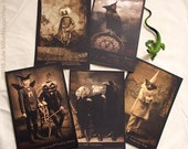 Set of 5 MIXED POSTCARDS - Get all the newest HaggisVitae cards in one set 4 x 6 matte finish