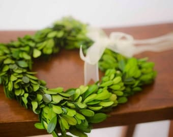 "8"" Square Preserved Boxwood Wreath, Simple Spring Wreath, Spring wreath, boxwood wreath, small boxwood wreath"