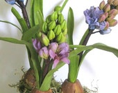 Spring Flowers, Rustic Decor, Flowering Spring Bulb, Spring Planter, Flower Arrangement, Spring Garden, Faux Hyacinth Bulb