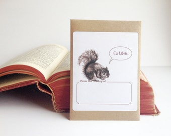 Squirrel book plate stickers. Ex Libris squirrel bookplates, set of 17 plus gift envelope. Custom printing option.