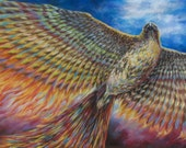Red Tailed Hawk Turned Phoenix painting - limited edition archival print