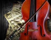 Cello with Bow an Acoustic Stringed Musical Instrument with Beethoven Sheet Music No. 28 - A Fine Art Classical Music Photograph