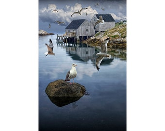 Fisherman's Wharf with Flying Gulls in Peggy's Cove Harbor in Nova Scotia Canada No.4 A Fine Art Nautical Seascape Photograph
