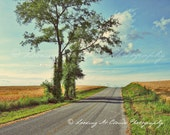 landscape art photo, open road, country backroads, blue sky and clouds, sunny day, peaceful summer scene, zen wall decor