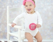 Baby Month Milestone Stickers, Girls Monthly Stickers, Monthly Bodysuit Stickers, Monthly Baby Stickers, Month by Month, Pink Purple (G187)