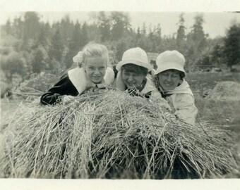 "Vintage Photo ""Hay Girls"" Farm Women Snapshot Photo Old Antique Photo Black & White Photograph Found Photo Paper Ephemera Vernacular - 169"