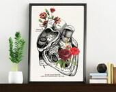 Flowery heart, white art Print- A4 Wall art. Human anatomy  print - Chic Science prints wall art, Human anatomy and flowers art WP091