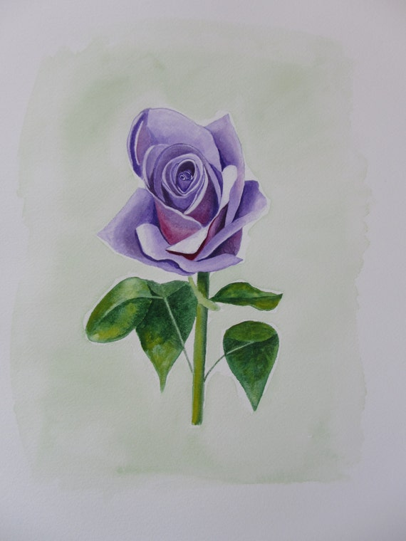 Purple Rose Painting, Original Watercolor painting by Shannon Olson