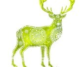 Deer Archival Art Print