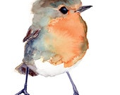 Baby Robin, baby shower gift, Bird Painting Red Robin, GICLEE print, nursery art gift