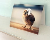 Greeting Card Chick in A Miniature Nurse Cap Photo Note Card Nursing Stationary (1) Get Well Soon
