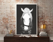 Black & White Horse Photography,Horse Wall Decor,Horse Wall Art,Horse Photo Print,Animal Photography,