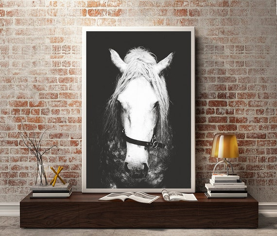 Wall Art Black Horse : Items similar to black white horse photography