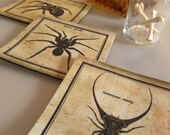 Victorian Arachnophile Linen and Leather Coasters
