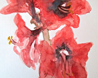 Original Watercolor Painting Amaryllis Series #4  Signed by Artist Unframed