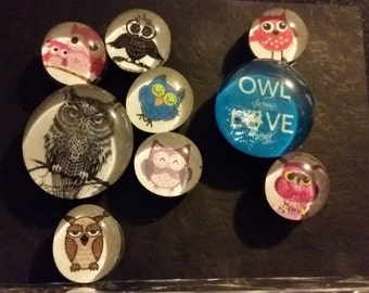 Set of 9 Strong, Glass, Owl Magnets, owl, bird, cute refrigerator magnets, office or kitchen decor,  fridge magnets, colorful