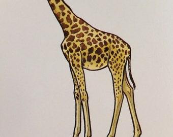 Vintage Print of Giraffe Print Exotic Animal Print African Animal Art Card Framing Modern Retro Exotic Home Decor Wall Hanging