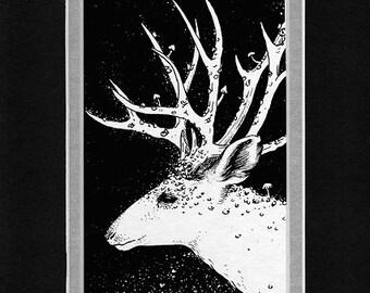 Deer Mounted Print 6 x 8