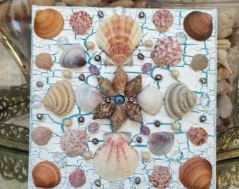 Boho seashell art on canvas,BoHo/indie seashells beach house decor.