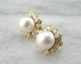 Classic 18k Gold, Diamond And Pearl Halo Earrings CWNM4W-P