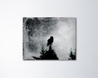 Owl Canvas Art, Owl Art, Bird Art, Nature Wall Art, Canvas Print, Owl Decor, Canvas Gallery Wrap, Black And White, Bird Photography