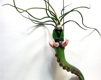 green, spiked, horn, air plant terrarium with tentacle