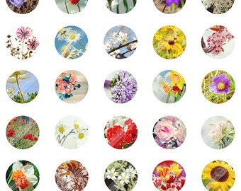 Blooming Flowers Digital Collage Sheet,Nature Printable Jewelry Making,Landscape,Art,1 inch Round Image Dome Pendant,Cabochon, Bottle Caps