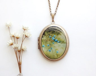 Juniper Berry Locket - Ethereal Fine Art Photo Brass Locket Necklace - Blue Woodland Fairytale