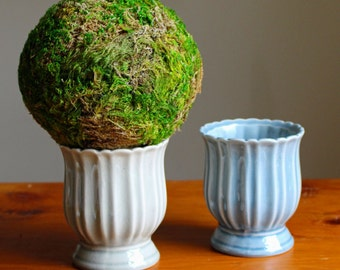 Moss Topiary (your choice of green or blue ceramic container)