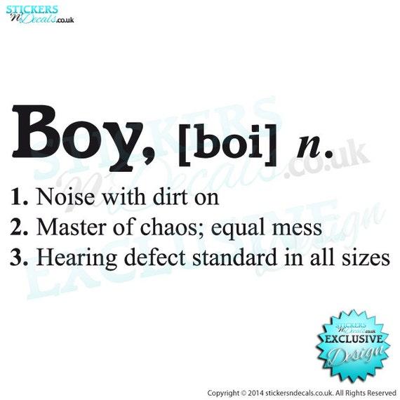 boy boi dictionary description meaning of boy vinyl