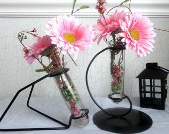 Test Tube Bud Vase Glass~Industrial~Modern~Iron Centerpiece~Mantel Vase~Flower Vase~Metal