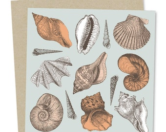 Sea Shell Greetings Card: She Sells