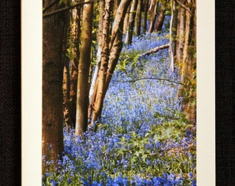 Greetings card: Blue Avenue