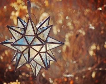 Outdoor Photography, Garden Decoration, Garden Photography