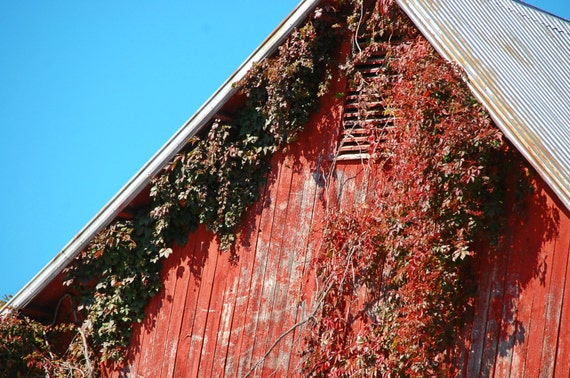 Barn in Upstate New York Outdoor Photography Old Barn Red