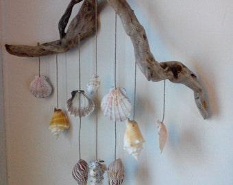 driftwood seashell wind chime