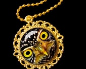 Owl  -  0,8 Inch Round Glass Pendant