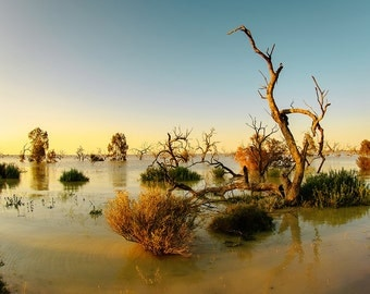 Landscape Fine Art Print, Australia, Lake Menindee in the outback