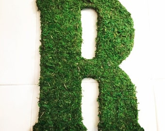 Large Moss Letters