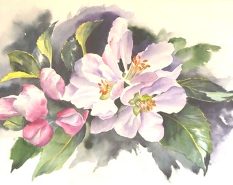Apple Blossom Watercolour Painting