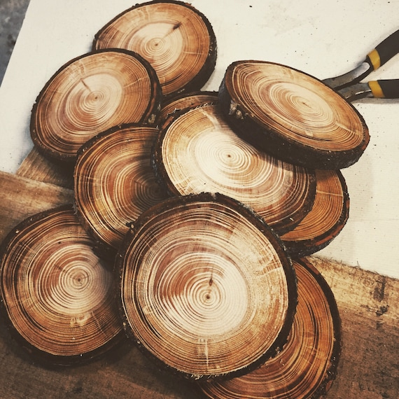 Freshly cut tree slices wooden discs for How to cut wood slices
