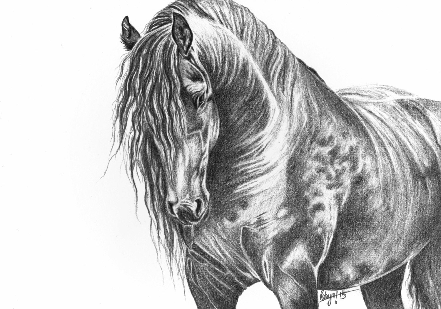 art print graphite pencil drawing horse by RobynsArtisticSide