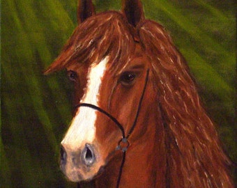 Horse  Original Paiting Oil on Canvas Landscape  Handmade Painting  by Silvia Dimova