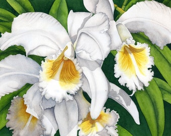 Watercolor painting...PROM TIME...orchids...giclee