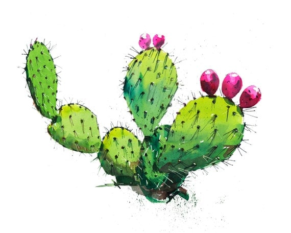 prickly pear cactus watercolor illustration print artwork