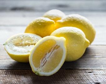 Fresh Certified Organic Eureka Lemons