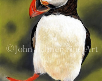 Party Puffin -  Greeting card from my painting of a Dancing Puffin ( wildlife, bird, animal, dog, butterfly, farm, art, wildlife art ) )