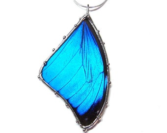 Blue Morpho Butterfly Wing Necklace - Real Butterfly Jewelry for a Nature Lover - Handmade